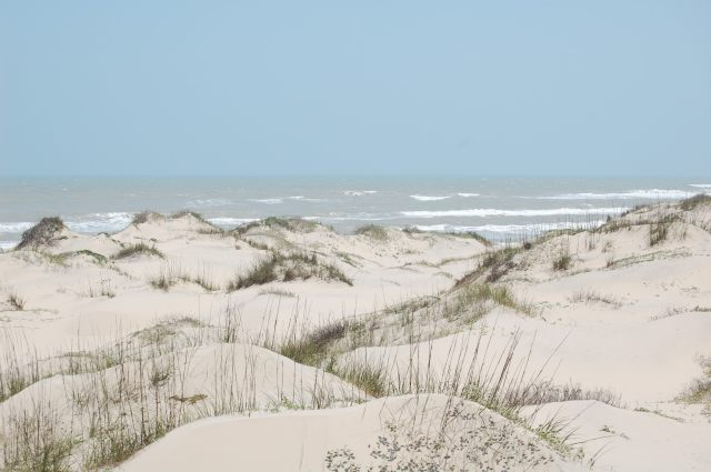 Top of dunes looking towards Gulf of Mexico